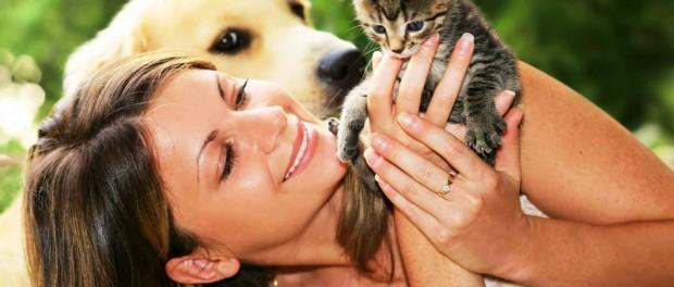 Как правильно выбрать домашнего животного?